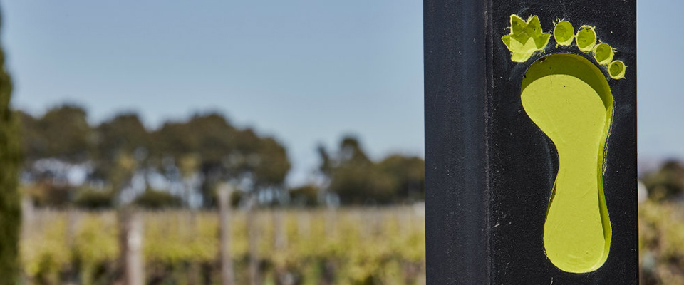 Coonawarra Wineries Walking Trail